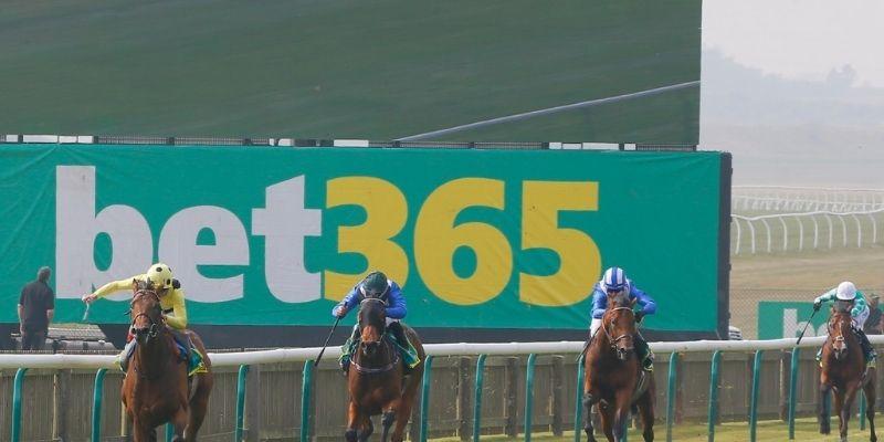 como ganar caballos bet365